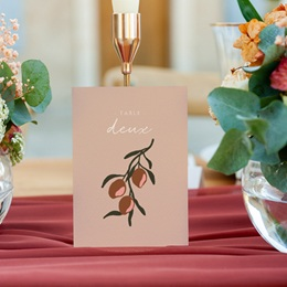 Marque table mariage Citrons Terracotta, Lot de 3 gratuit