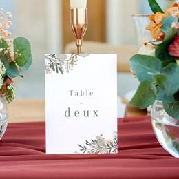 Marque table mariage Monnaie du Pape & Gypsophile, 3 repères gratuit