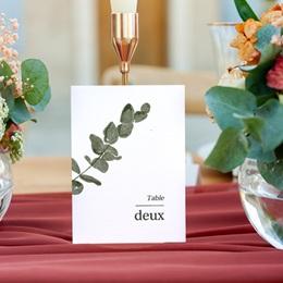 Marque table mariage Eucalyptus Herbarium, Lot de 3 repères gratuit