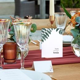 Marque table mariage Fougères Herbarium, lot de 3 repères pas cher
