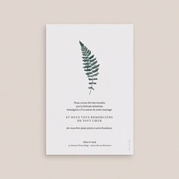 Carte de remerciement mariage Fougères Herbarium, Merci pas cher
