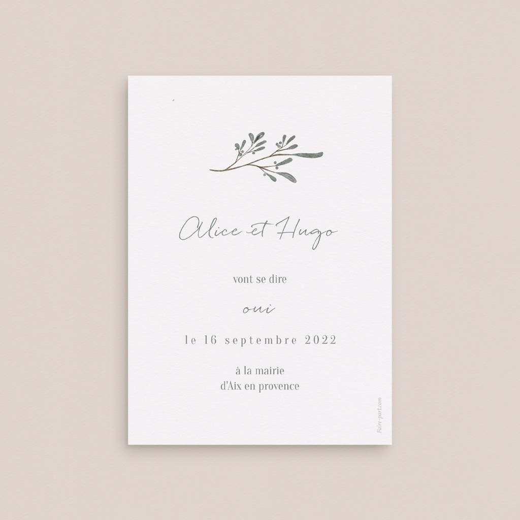 Save-the-date mariage Monnaie du Pape & Gypsophile, Jour J
